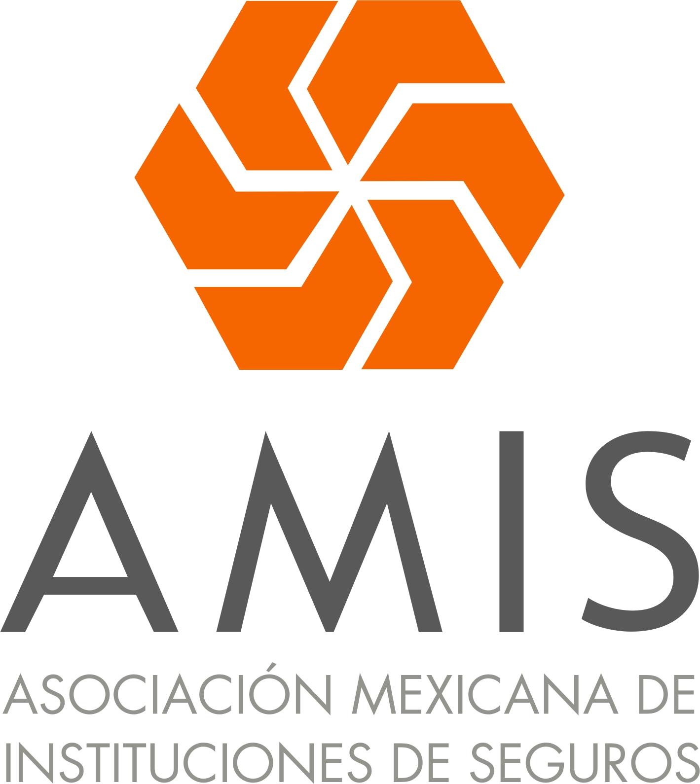 AMIS Logo photo - 1