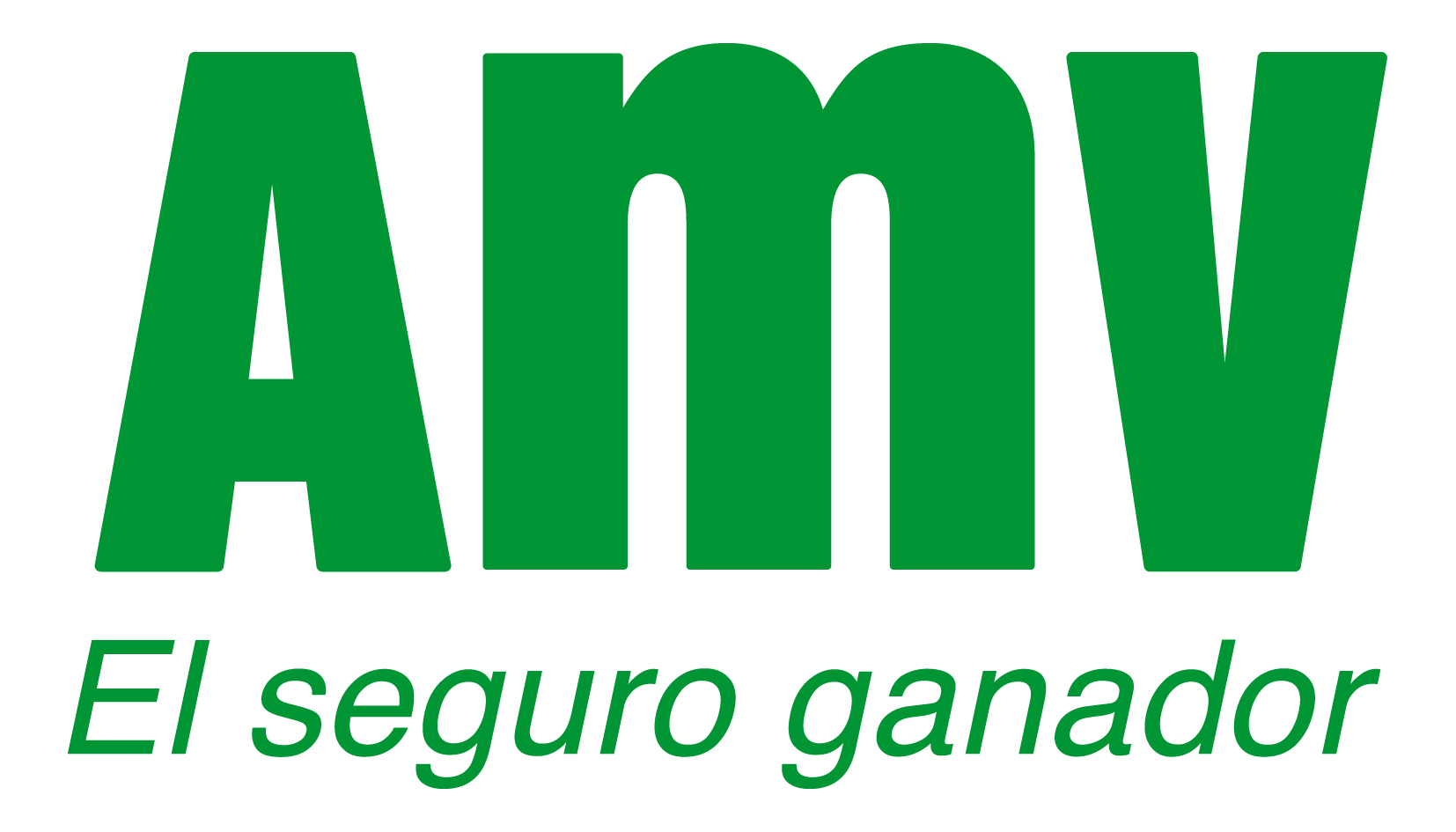 AMV Seguros Logo photo - 1