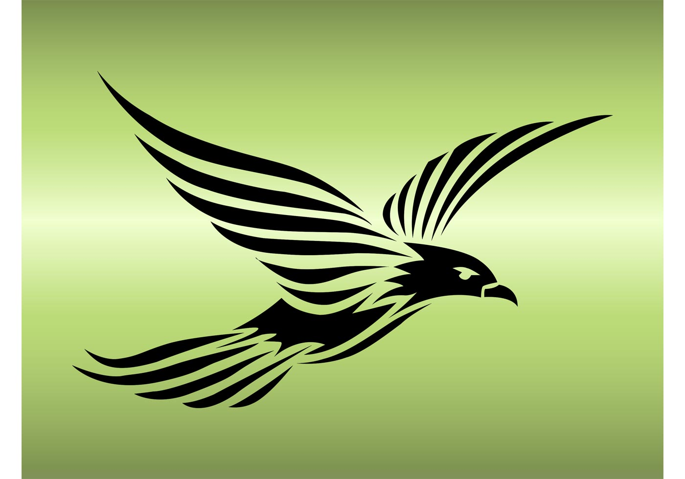 Aguia_Eagle Logo photo - 1