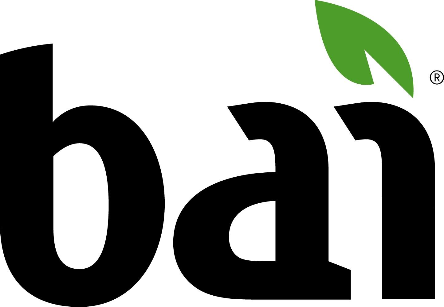 BAI Logo photo - 1