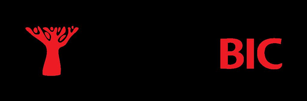 Bic Banco Logo photo - 1
