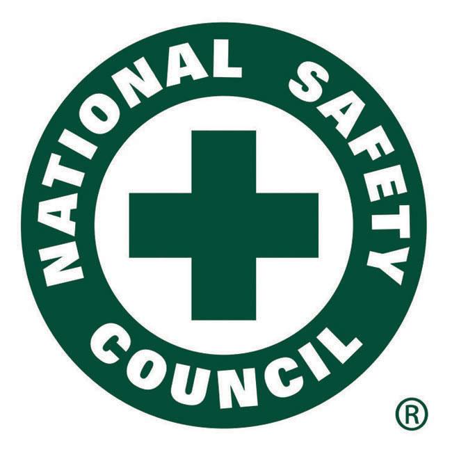 NSC Logo photo - 1