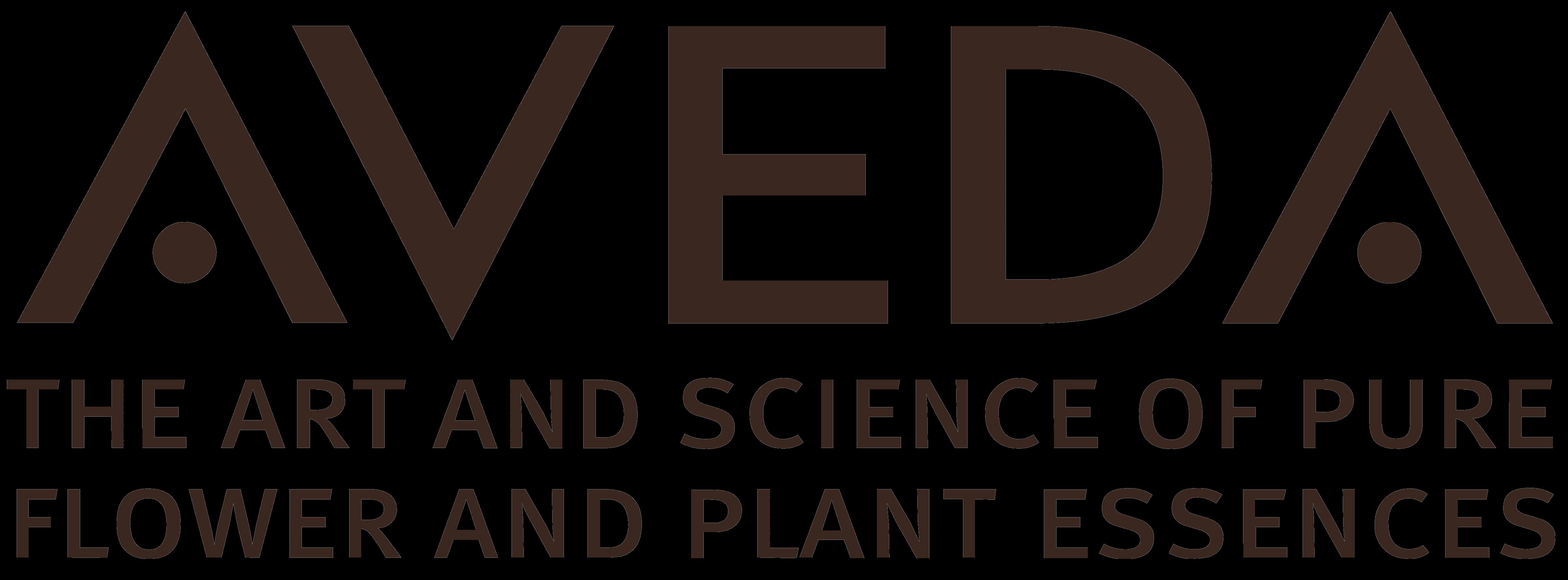 XVADA Logo photo - 1